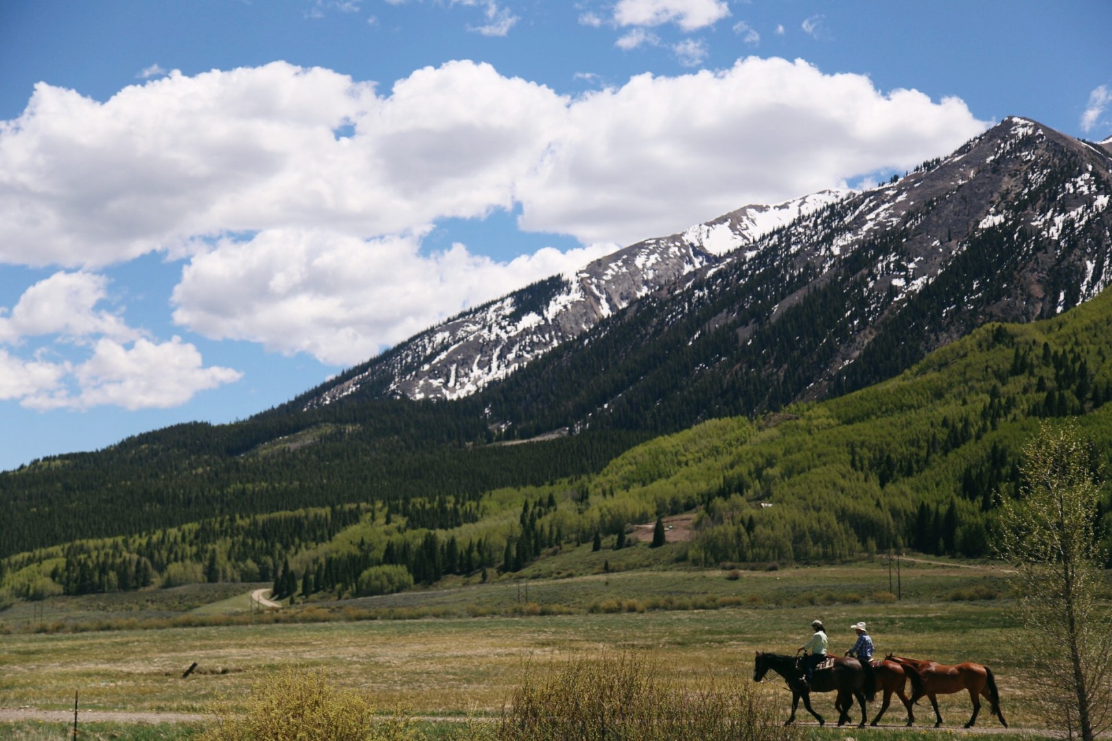 An incredible view of the country side in Crested Butte, CO. Andrea Watson | Clarion